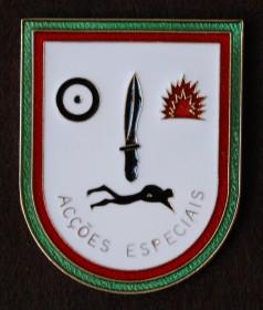 Primeiro distintivo do pessoal apto para servir em destacamentos especiais. (Col. do autor)