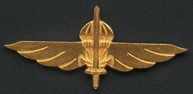 Distintivo metálico de qualificação «SSG».