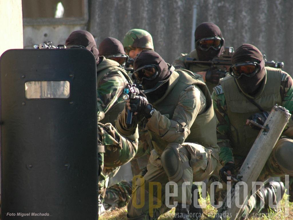 Além das tipicas missões de reconhecimento especial as operações especiais podem efectuar acções directas sobre objectivos pontuais.