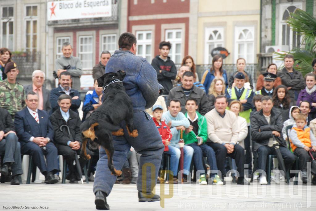 """O """"vilão"""" a ser atacado pelo cão treinado é sempre um momento de alguma emoção para quem assiste"""