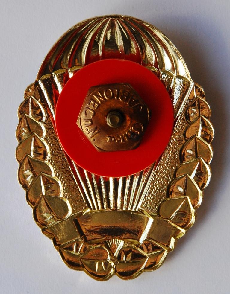 Reverso do distintivo onde se pode observar o tipo de fecho para fixação nos uniformes. (Col. do autor)