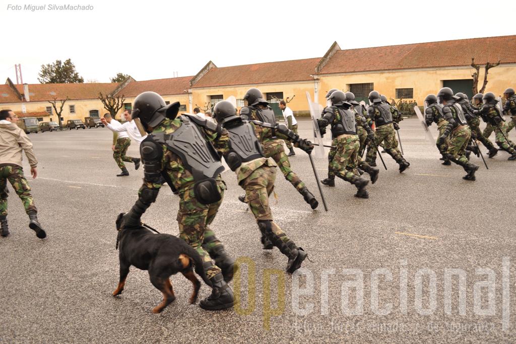 A manutenção de ordem pública é hoje uma capacidade de muitas unidades do Exército Português e o RL tem contribuído também para a sua difusão em alguns PALOP