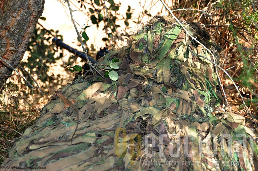 Um foto bem significativa! A excelência da camuflagem até confundiu o lagarto que passeia despreocupado sobre...o sniper das operações especiais.