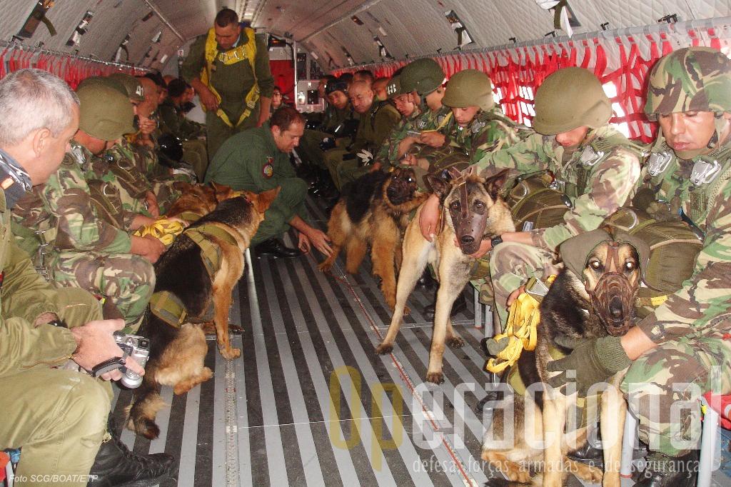 No interior do avião os tratadores têm atenção permanente ao comportamento do canideo. Saltaram cinco binómios.