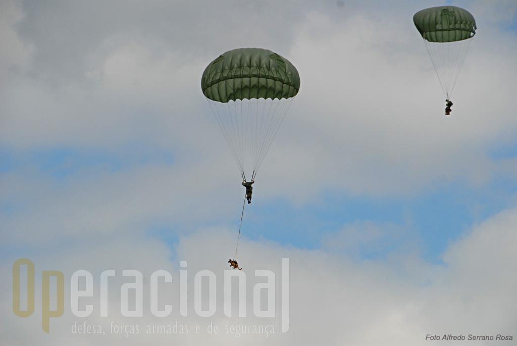 A Secção de Cães de Guerra do Batalhão Operacional Aeroterrestre salta pela primeira vez desde o novo C-295M da Força Aérea Portuguesa