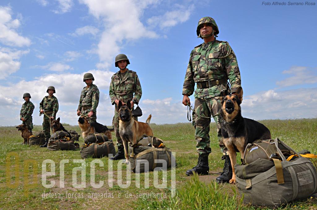 Patrulha de salto pronta sem novidades. Os cinco pára-quedistas e cinco cães que cumpriram a primeira missão de salto em pára-quedas a partir do C-295M da Força Aérea Portuguesa.