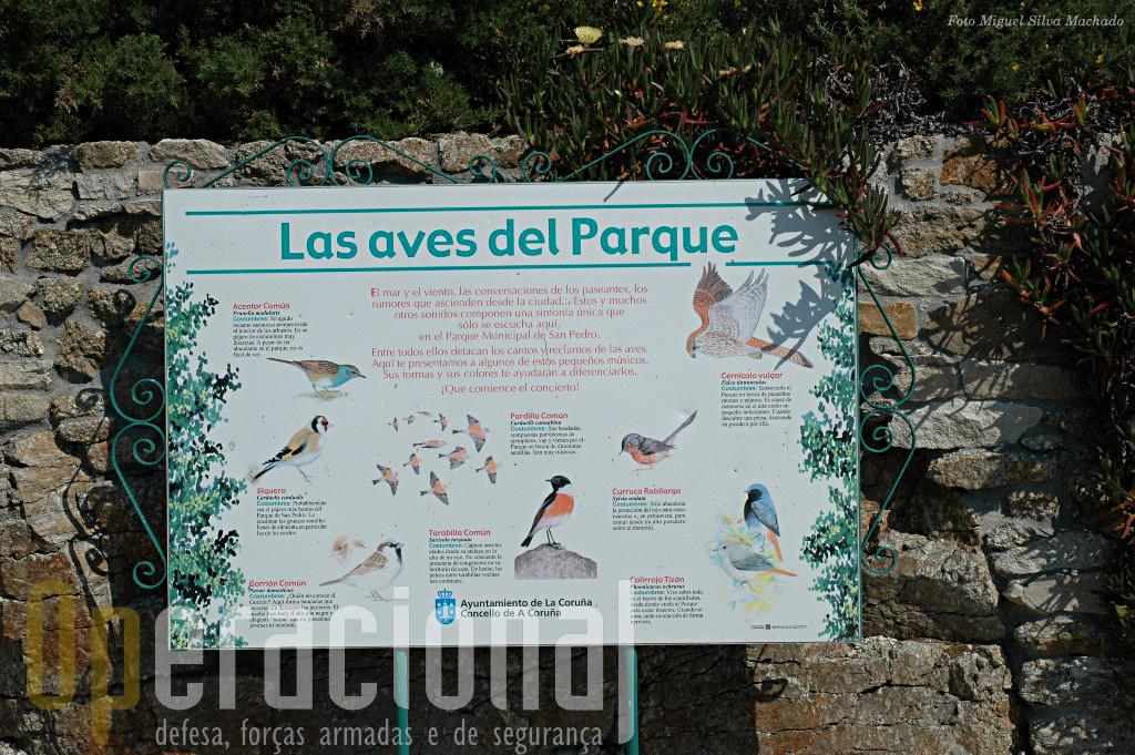 Nem só de história militar se fala no Monte San Pedro.
