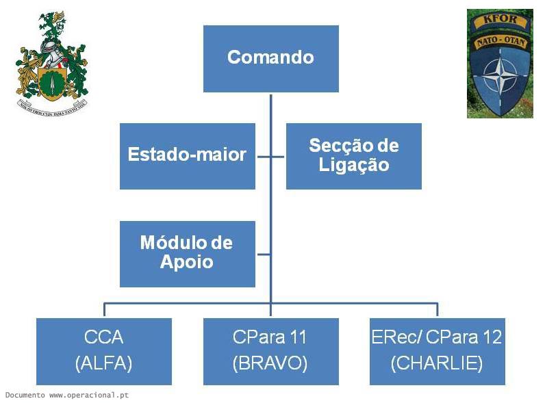 organograma-simplificado-copy