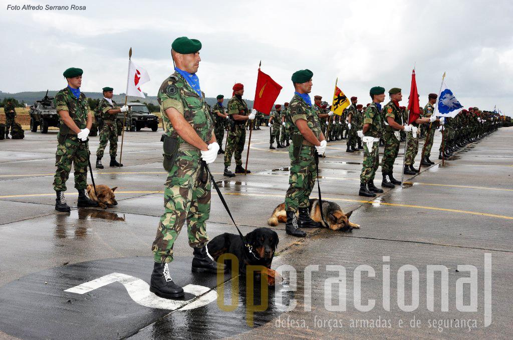 """A BrigRR foi criada com esta designação em 2005 na sequência do processo que ficou conhecido como """"Transformação do Exército""""."""