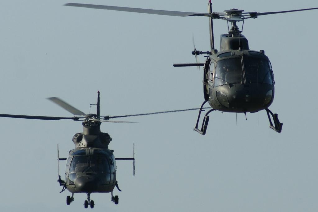 """A modernização do """"Pantera"""" (à esquerda) e do """"Esquilo"""", vão manter estes helicópetros ao serviço por mais 25 anos."""