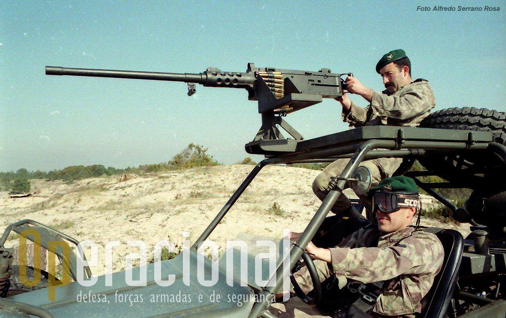 Parte das FAV estavam equipadas com o LGA Mk.19 e outras com a potente Browning 12,7mm. Inicialmente cada FAV apena dispunha de uma arma.