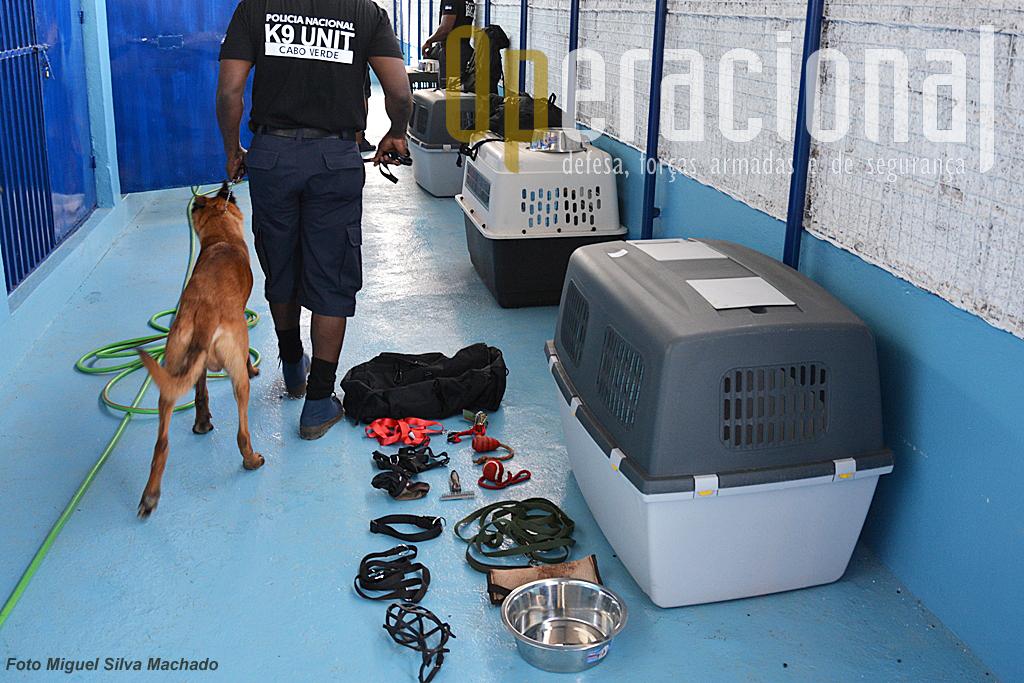 O Grupo forneceu os cães, formação e todo o material, alimentação e cuidados veterinários necessários.