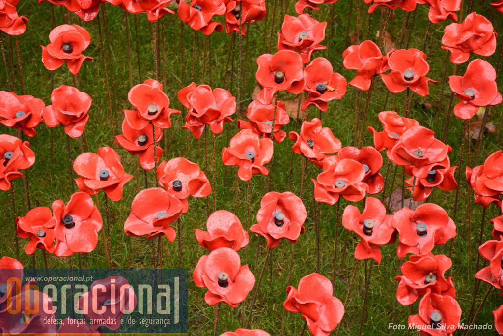 Mais de 800.000 papoilas de cerâmica criaram um tremendo impacto visual, que tornaram a Torre de Londres, por uns meses, o maior símbolo global da memória aos que tombaram na 1.ª Guerra Mundial.