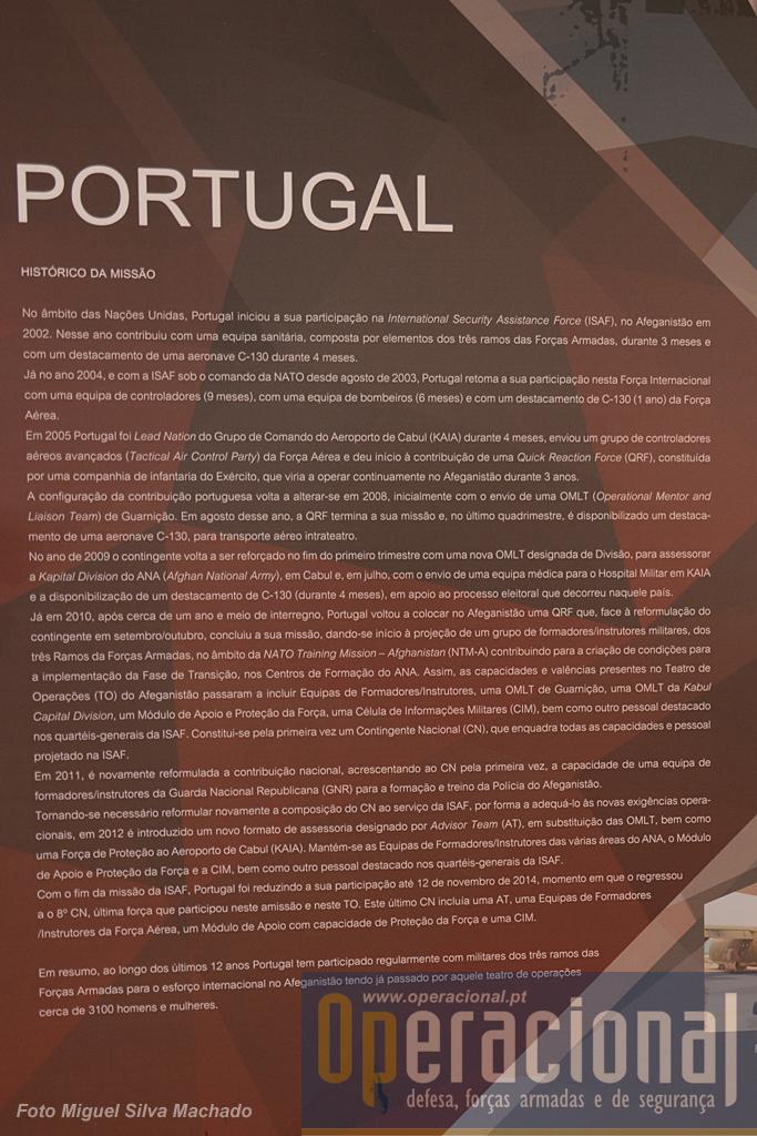 Síntese da participação portuguesa.