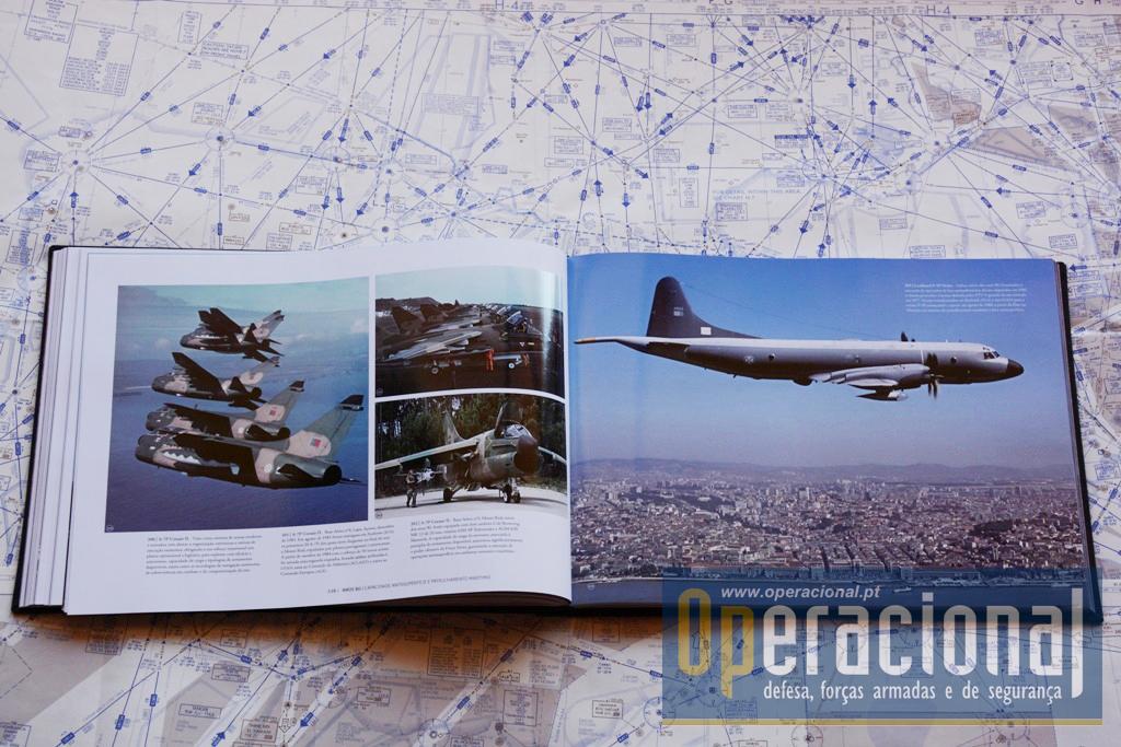 DEZ DÉCADAS DE FORÇA AÉREA DSC_3780 copy