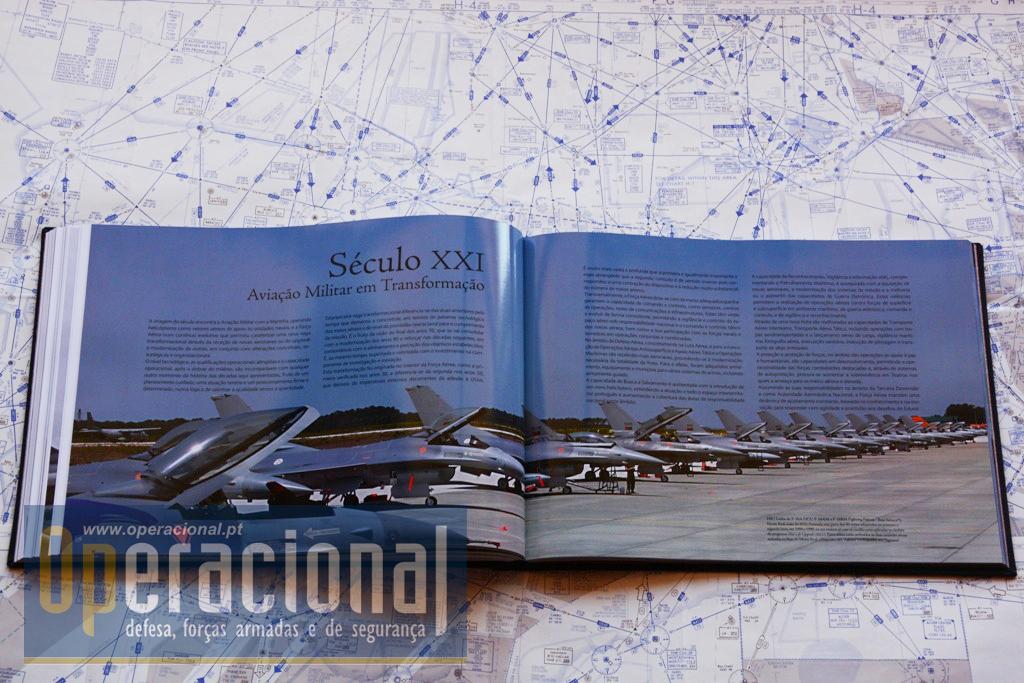 DEZ DÉCADAS DE FORÇA AÉREA DSC_3785 copy