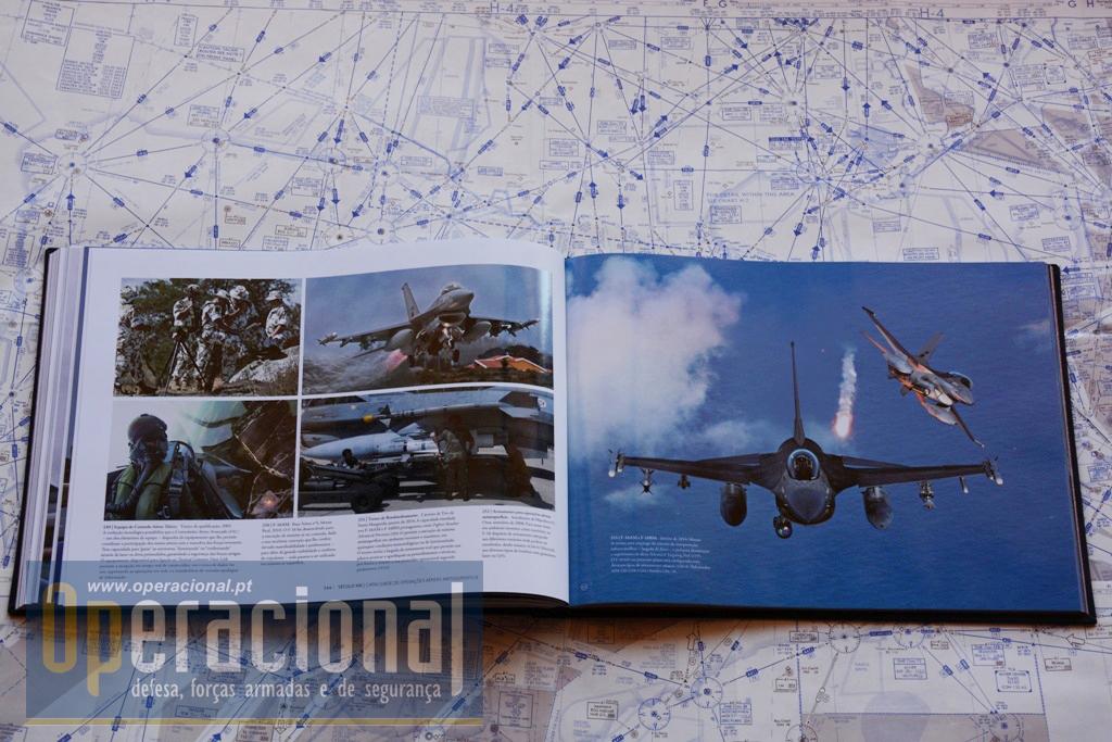 DEZ DÉCADAS DE FORÇA AÉREA DSC_3786 copy