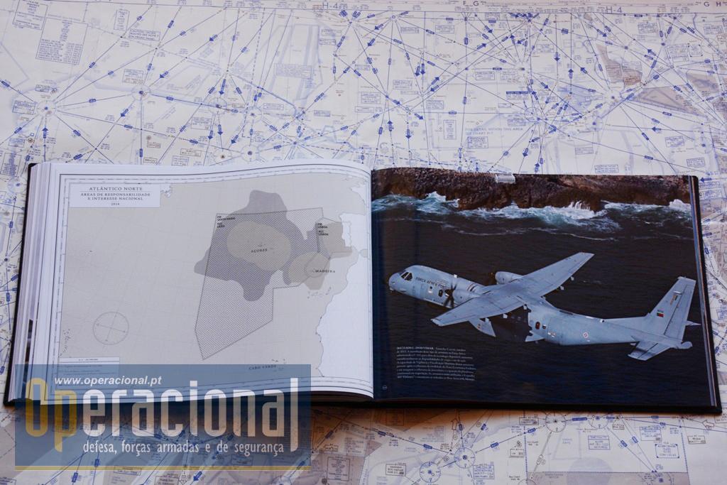 DEZ DÉCADAS DE FORÇA AÉREA DSC_3788 copy