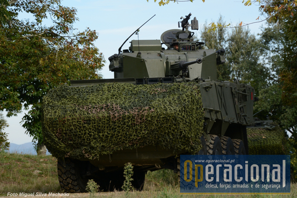 O Grupo de Reconhecimento da BrigInt já tem atribuídas 44 viaturas blindadas Pandur II e 11 V-150. O seu efectivo rondará os 400 militares.