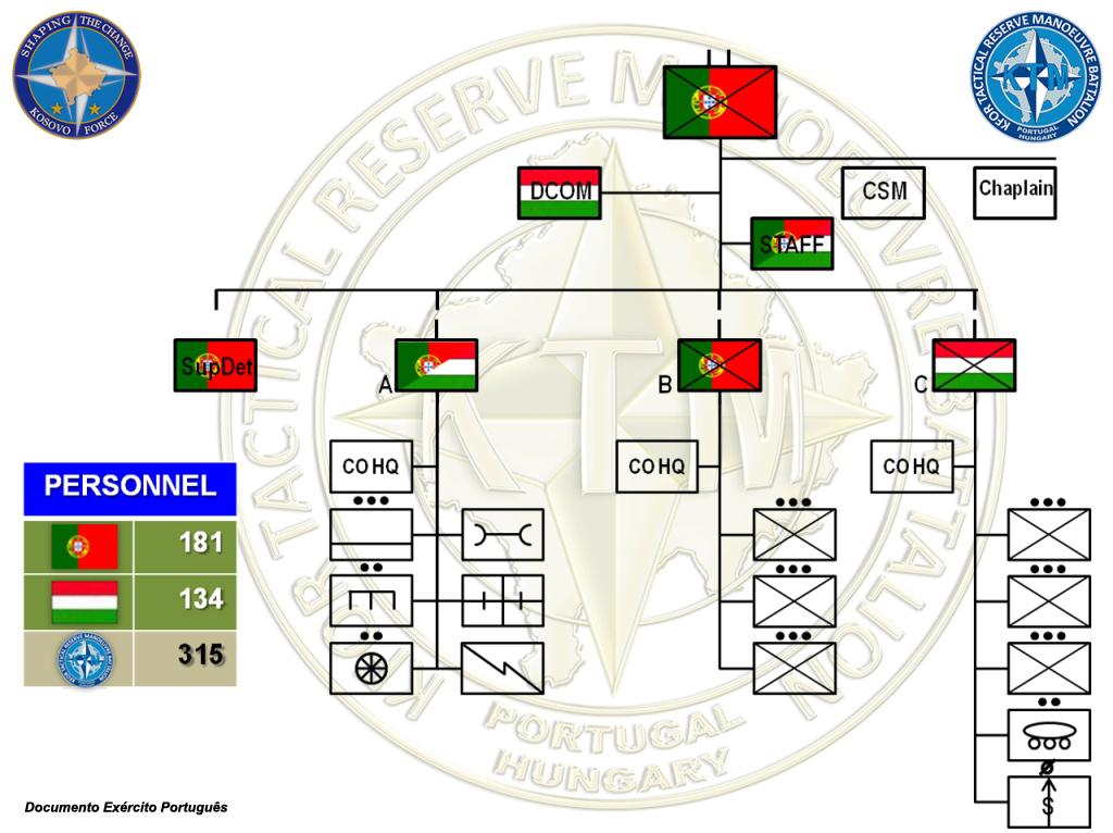 A KTM - Reserva Táctica do Comando da KFOR que pode actuar em todo o território do Kosovo e mesmo na Bósnia e Herzegovina.
