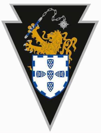 Os militares da BrigMec usam no ombro esquerdo do uniforme de campanha este símbolo. Aqui fica o seu significado.