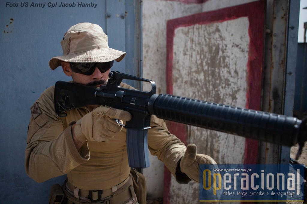 A Força Nacional Destacada actualmente no Iraque pertence ao 1.º Batalhão de Infantaria Pára-quedista da Brigada de Reacção Rápida.