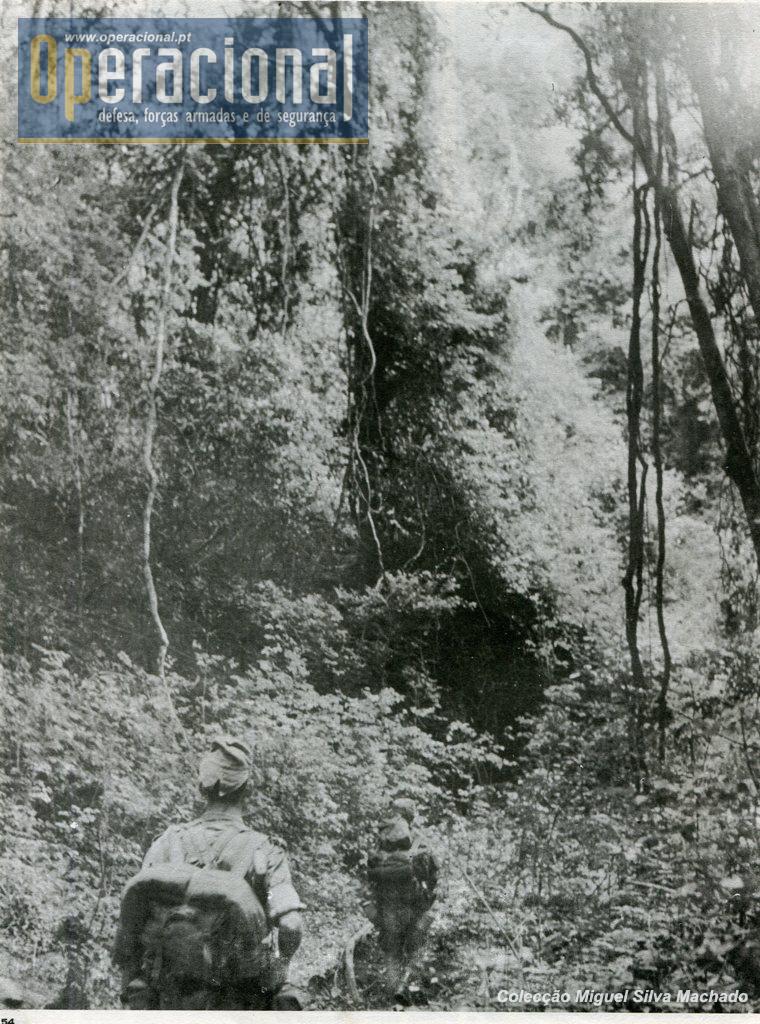 Noticia Angola020
